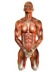 Wall Mural - Muskelstudie Mann auf Knien