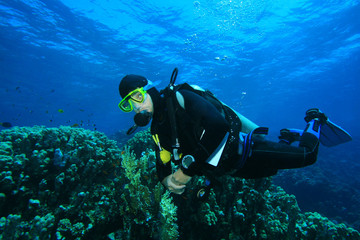 Scuba Diving in the clear blue water of the Red Sea