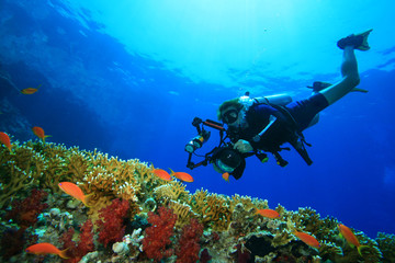 Scuba Diver with camera approaches tropical fish on coral reef