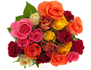 Rosen freigestellt