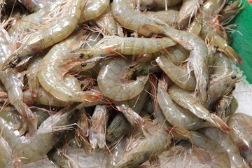 Raw prawn on market