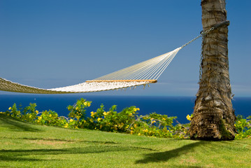 An inviting hammock in an island paradise