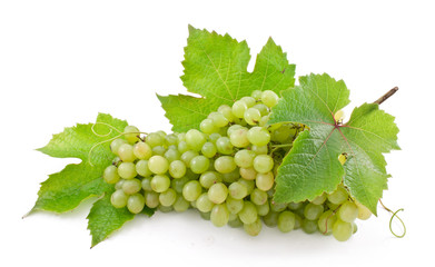 Cluster of ripe, green grapes.