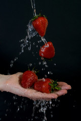 Deurstickers Opspattend water Strawberries in flowing water on palm.