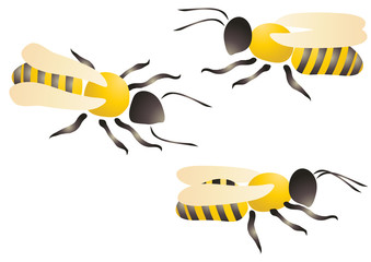 Vector illustration of three bees or wasps
