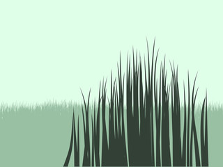 Grass Vector Shapes