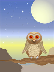 An owl vector  illustration
