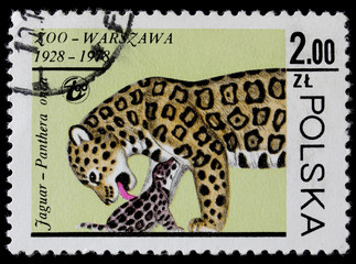 post stamp shows panther with a baby