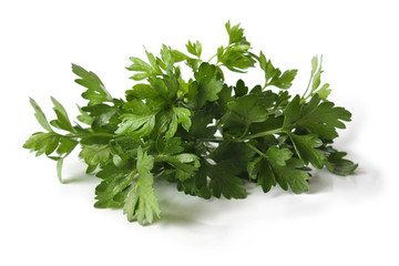 Parsley leaves on a white background