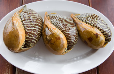 Asian meal-large molluscs
