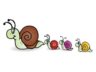 snail family take a walk