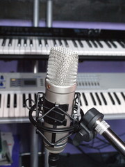 Microphone and synthesizers