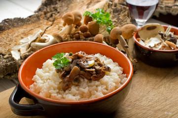 mushroom rice on bowl- risotto con funghi
