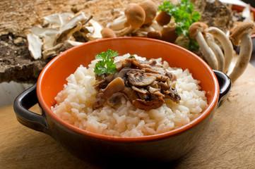 mushroom rice on bowl - risotto con funghi