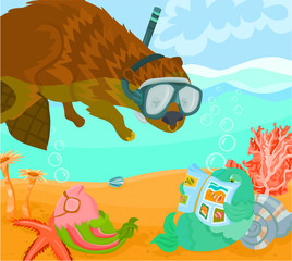 Summer story B - Beaver diving