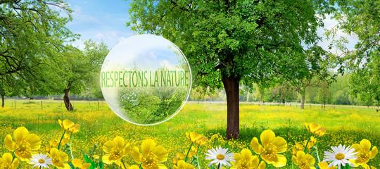 Respectons la Nature