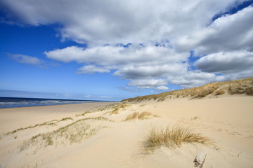 Sand dunes near to the sea
