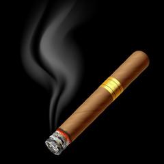 Smoldering cigar. Vector.