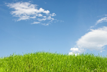 Green grass with beautiful sky