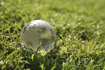 conceptual image of a globe on grass