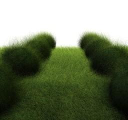 zielona droga #2 - fototapety na wymiar