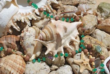 few seashells