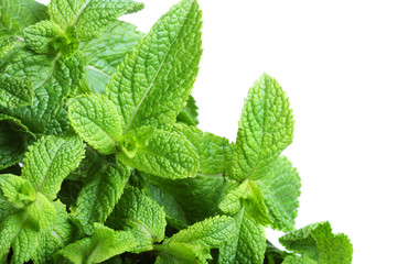 Border of mint