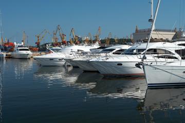 quite harbour