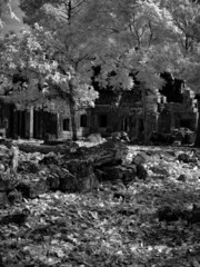 Angkor Wat - The bliss of Khmer architecture and art nb.13