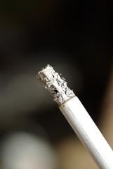 fumée cigarette