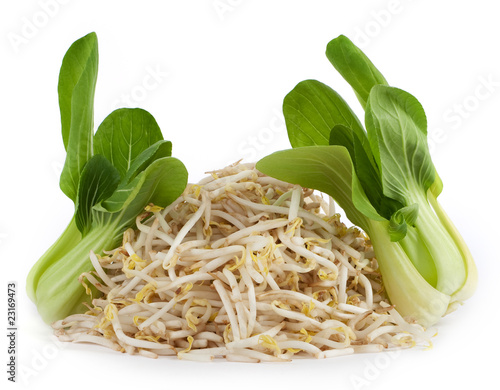 Pok Choi Und Bambussprossen Stock Photo And Royalty Free Images On