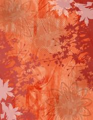 Wall Mural - Fond Bordure Plantes et Fleurs en Orange