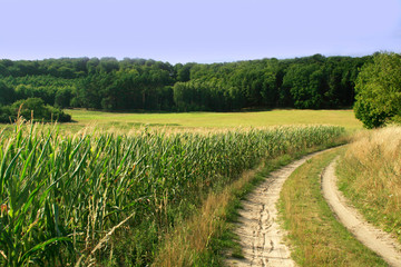ländliche Gegend in Brandenburg