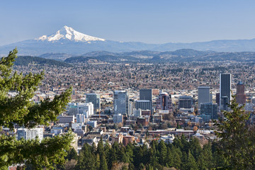 Wall Mural - Beautiful Vista of Portland, Oregon