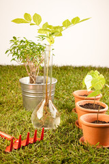 Ecologic gardening