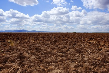 plough plowed brown clay field blue sky horizon Wall mural