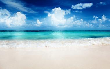 Wall Mural - sand of beach caribbean sea