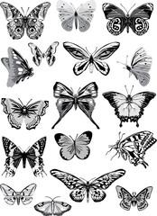 set of grey butterflies