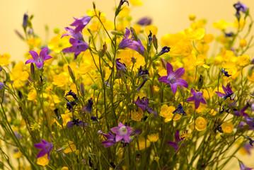 bouquet of wild colors