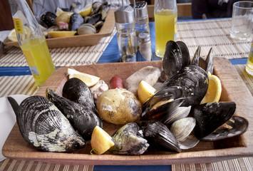 curanto, comida típica chilena