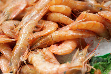 Shrimps at market