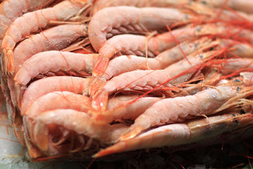 The prawns for sale