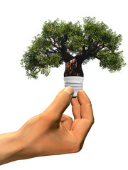 High resolution conceptual 3D tree as a lamp held in hand