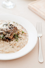 Risotto with mushrooms on the white plate
