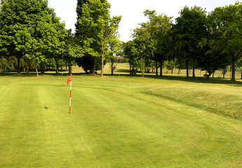 Green golf course landscape