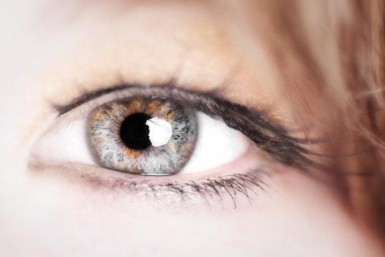 Auge - beautiful