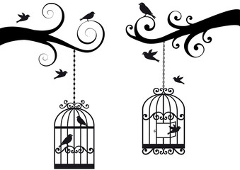 Zelfklevend Fotobehang Vogels in kooien bircage and birds, vector