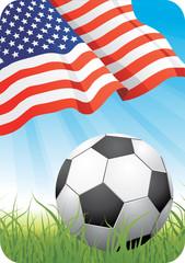 World soccer championship 2010 - USA