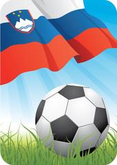 World soccer championship 2010 - Slovenia
