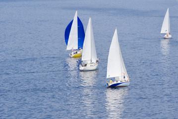 Local regatta on a river.